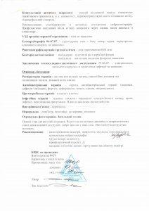 vityag-iz-xvor-2